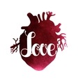 Love lettering on watercolor heart vector image