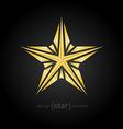 luxury broken golden star on black background vector image vector image