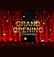 realistic grand opening colorful red velvet vector image vector image