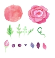 Watercolor rose splash elements set Vintage vector image