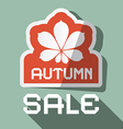 Autumn Sale Flat Design with Chestnut Leaf vector image