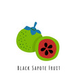 black sapote fruit vector image vector image