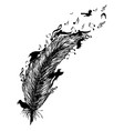 feather with birds and music notes vector image vector image