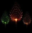 Festive firework three different color shape pine vector image vector image