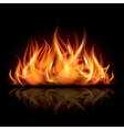 Fire on dark background vector image vector image