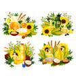 natural oil and corn olives sunflower and canola vector image