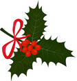 twig of holly with leaves and berries isolted on vector image vector image