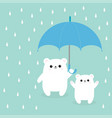 two polar white small little bear cub holding vector image vector image