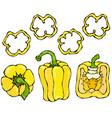 yellow bell peper set half of sweet paprika and vector image vector image