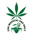 medical cannabis vector image