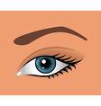 close up eye isolated - vector image vector image