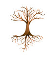 empty tree isolated with branches and roots vector image
