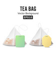 pyramid shape tea bag set mock up with empty vector image vector image