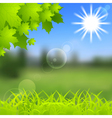 Spring and summer background vector image vector image
