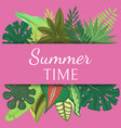 summer time banner poster vector image vector image