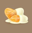 tangerine slices in white sauce vector image