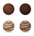 chocolate nuts ball dark and white set one vector image