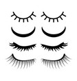 closed eyes with lashes set design isolated on vector image
