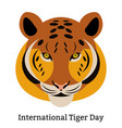 international tiger day july 29 wild mammal is vector image