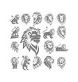 lion logo design collection symbol set vector image