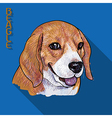 Beagle portrait with long shadow vector image vector image