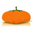 halloween pumpkin vegetable vector image