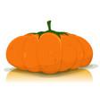 halloween pumpkin vegetable vector image vector image
