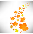 Falling Autumn Leaves vector image vector image