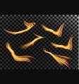 set magic gold glitter wave glowing fire lines vector image