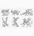 set of mythological animals chinese dragon harpy vector image vector image