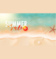 summer sale card with starfish sea water and sand vector image vector image