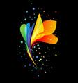 bright beautiful decorative flower on black vector image