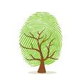 fingerprint tree green human finger print vector image vector image