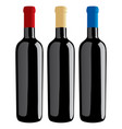 wine bottles classic shape vector image vector image