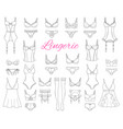 fashionable female lingerie collection vector image vector image