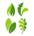 green leaves as logo for eco company environment vector image vector image