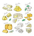 hand drawn cheese doodle appetizers and food vector image