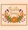 happy thanksgiving day festive phrase handwritten vector image vector image