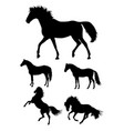 horses gesture animal silhouette vector image vector image