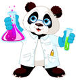 Panda Scientist vector image