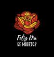 Rose with feliz dia de muertos vector image