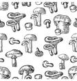 seamless mushrooms set compilation of vector image
