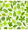 Seamless pattern from spring leaves