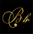 Gold letter B with roses