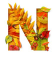 autumn stylized alphabet letter n vector image vector image
