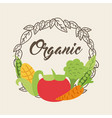 background organic icon vector image