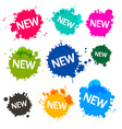 Colorful Blots - Stains - Splashes with New Title vector image vector image
