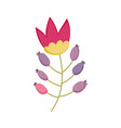 decorative nature ornament flower icon vector image vector image