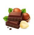 hazelnuts and chocolate pieces vector image vector image