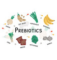 prebiotic bacteria products and nutrient rich food